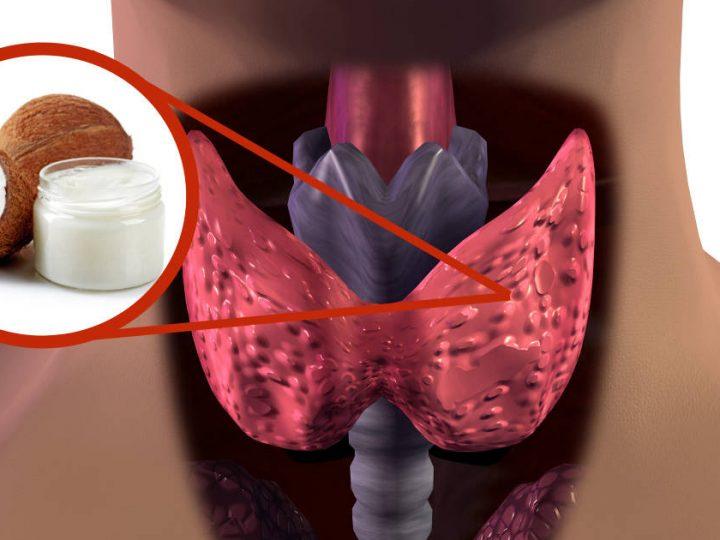Uleiul de cocos imbunatateste functionarea glandei tiroide