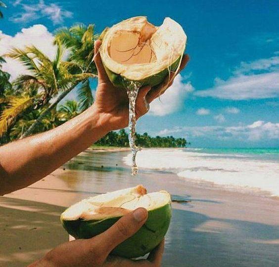 Cum să alegem cel mai bun ulei de cocos?